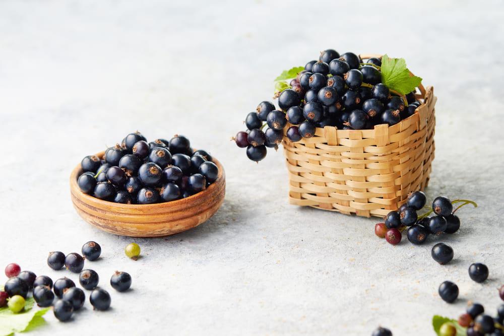 Coacazele negre: beneficii si contraindicatii