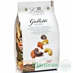 Paste galletti tricolore grau 500g - LOGGIA DEI GRANI