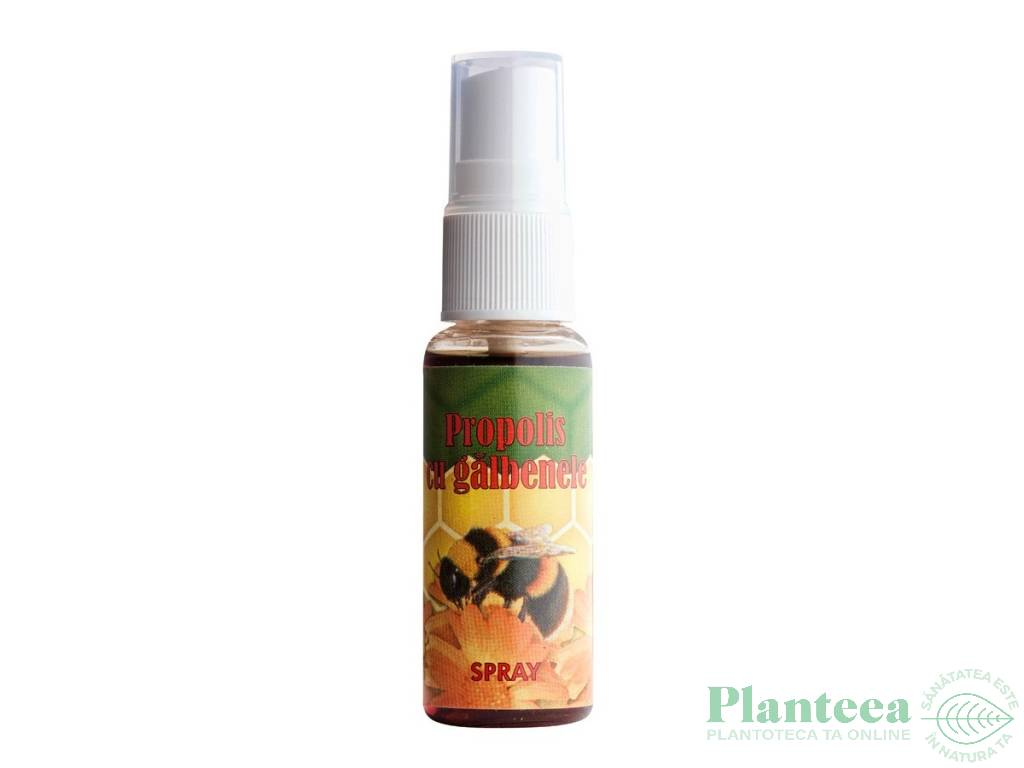 Spray propolis galbenele 25ml - TRANSVITAL