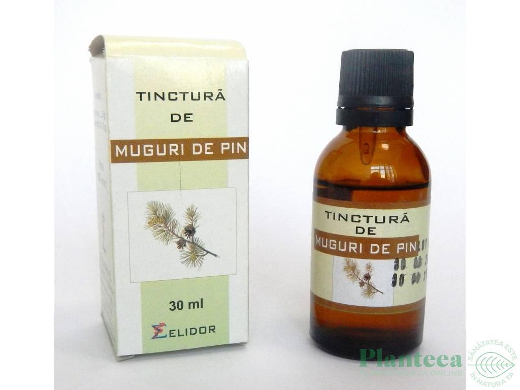 tinctura de nuci de pin pentru bolile articulare