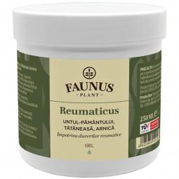 Gel antireumatic Reumaticus 250ml - FAUNUS PLANT