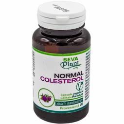 Normal colesterol 60cps - SEVA PLANT