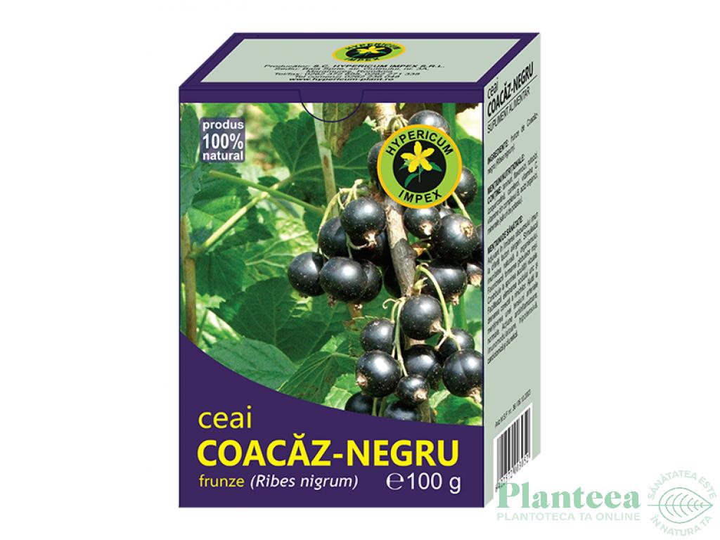 Proprietăți utile și contraindicații ale frunzelor de coacăze