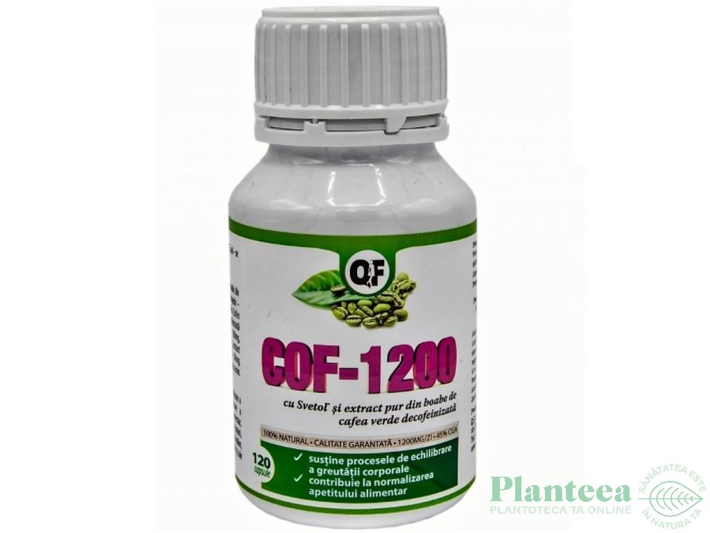 COF 1200 120cps - QF LABORATORIES