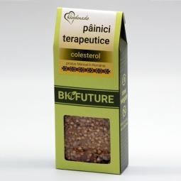 Painici crocante terapeutice colesterol 100g - BIOFUTURE