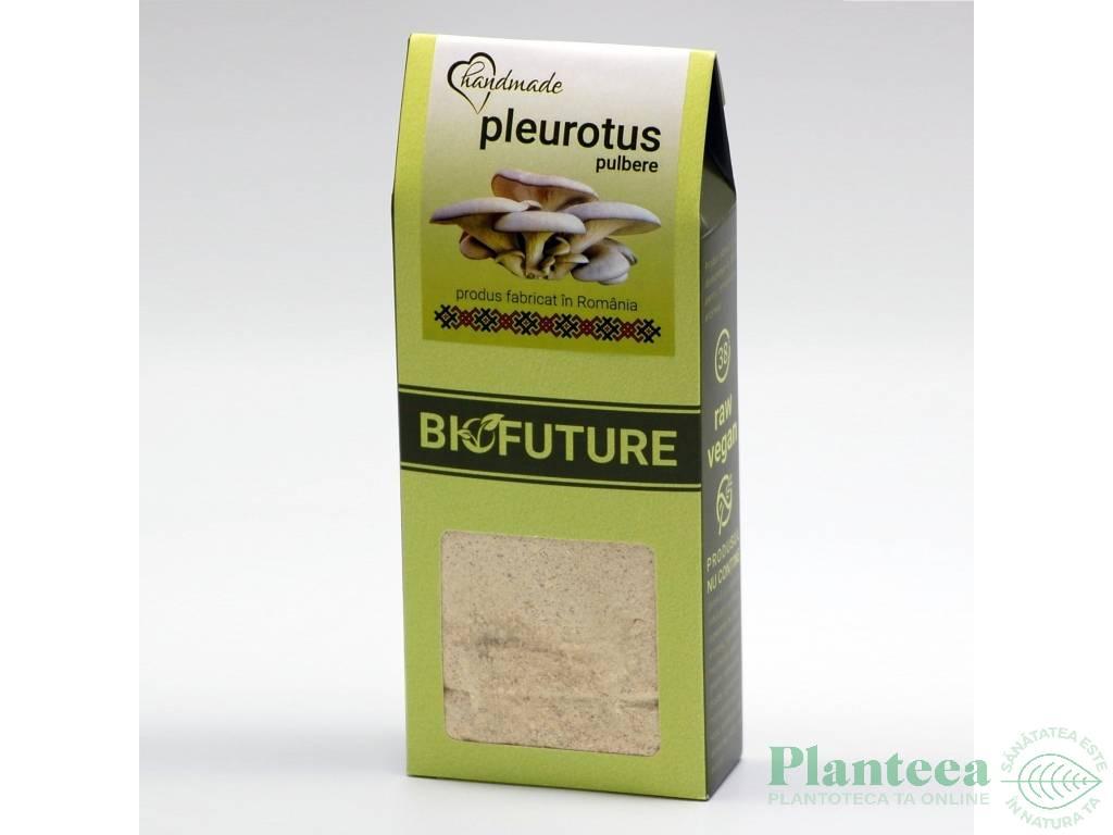 Ciuperci pleurotus uscate macinate 120g - BIOFUTURE