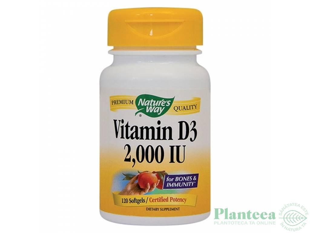 Vitamina D3 2000ui 120cps - NATURES WAY