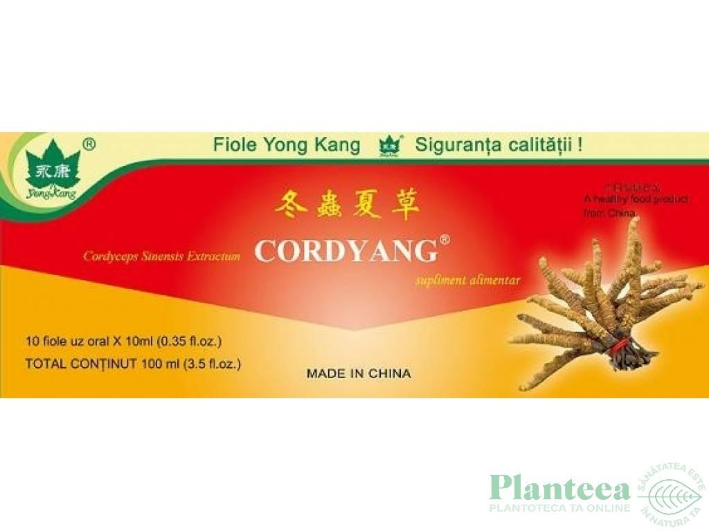 Cordyang cordyceps 10fl - YONG KANG
