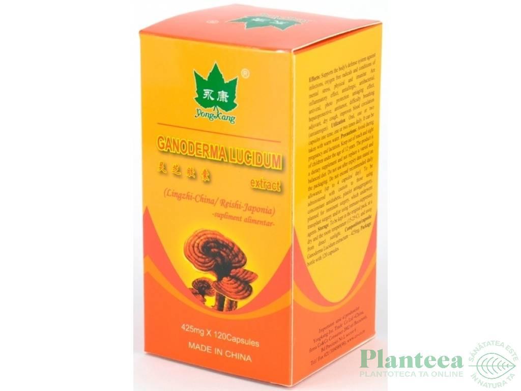 Ganoderma 120cps - YONG KANG